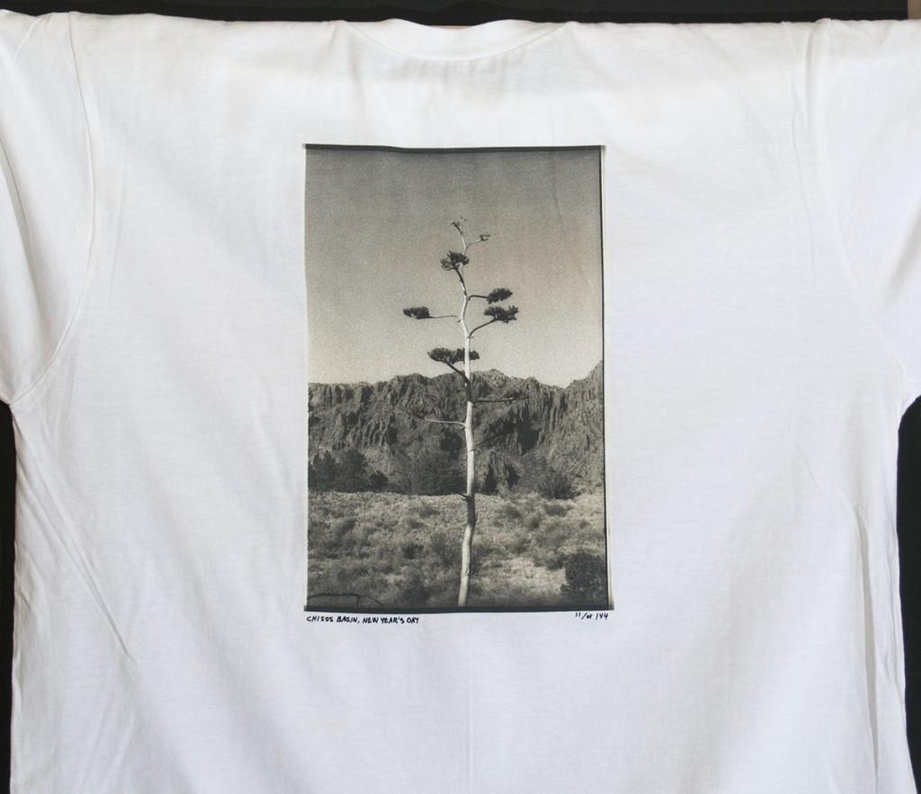 Century_Plant_1200